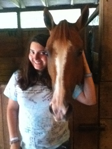 The brownish color of the horse I am standing by. I'm not sure what the color is called.