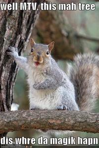 YES! Some pedefile could see your stuff and stalk you! And your mom would see you!!!! ewwww! like squirrels, nasty beasts!