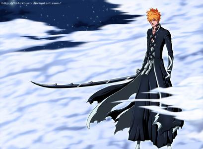 Ichigo's New Bankai clothes