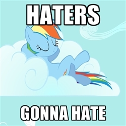 Did you know that haters gonna hate?