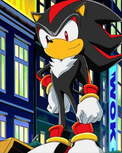 shadow the hedgehog from sonic x