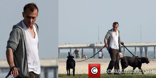 Rob with his dogs. I´m lovin his シャツ