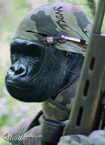 Use my training in gorilla warfare to defend myself.