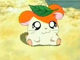 Hamtaro is my favorite! he's so kawaii!