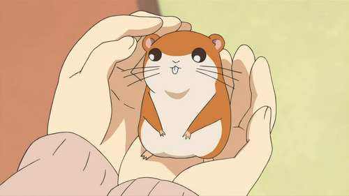 Chikubi (nipples) from Mitsudome :) The only other ハムスター not from Hamtaro 投稿されました here!