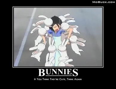 I find this picture to be hilarious and cute with Rukia-chan and Bunnies :p