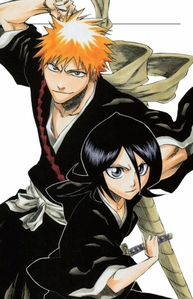 Ichigo and Rukia from Bleach