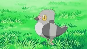 Pidove!!! it's actually really strong, it made me win against a couple of gym leaders and one of the elite four.