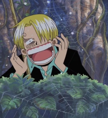 I know how about Sanji from One Piece!
