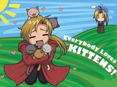 Alphonse Elric :3 I wish I was one of those kittens!
