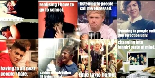 my life (and a directioners) in a nutshell :l