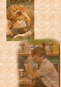 My Matthew looking a bit embarrassed with a lion doing the exact same thing he's doing.