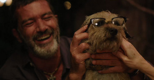 Antonio Banderas with a dog ahahah