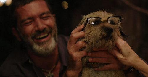 Antonio Banderas with a dog ahahah