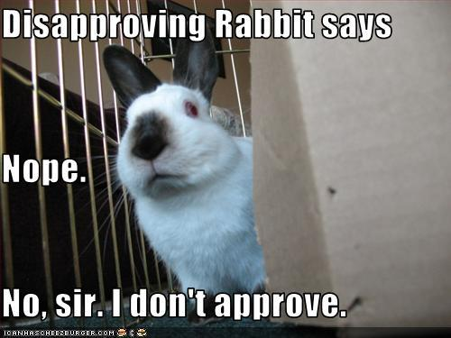 ...Disapproving Rabbit's gonna handle it for me.
