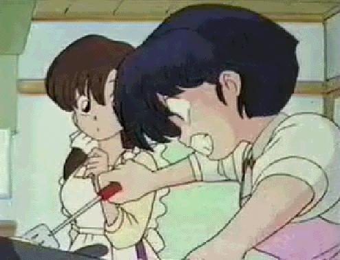 Akane Tendo from Ranma 1/2 is always the first one that comes to mind when I think of a bad cook. I feel so bad for her. She really expresses her Amore in her attempts at cooking, but she just sucks at it. And she's got to learn to taste test it before trying to serve it first! Now Kasumi, she's a great cook! So here's a bad cook, great cook combo.