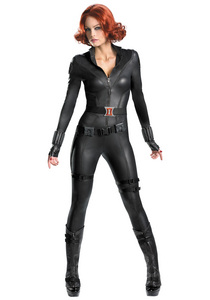 I'm going to be the Black Widow. Well, I've been to a couple of parties already and I was the Black Widow. Here is the pic of the costume I bought (minus the wig):