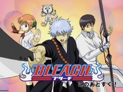 Gintama (Гинтама) as Bleach: -Kagura as Rukia -Sadaharu as Kon -Gintoki as Ichigo -Shinpachi as Uryu