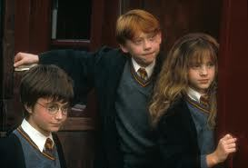 HERMIONE:did you see what is was standing on