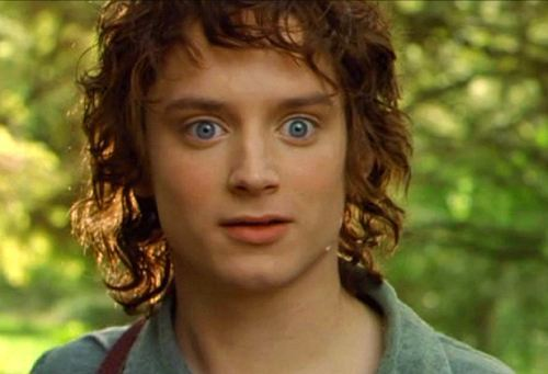 Frodo Baggins played 의해 Elijah Wood. I completely adored him as Frodo in Lord of the Rings.