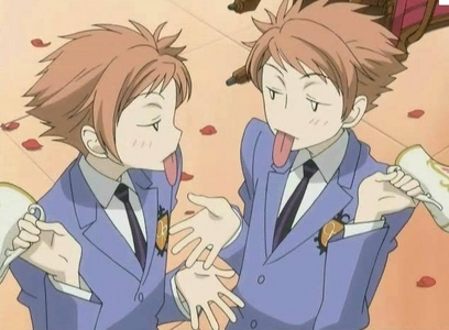 The Hitachiin twins (Kaoru and Hikaru-kun from Ouran Highschool Host Club!) they both have arancia, arancio hair but that's just one of the few things they have in common!