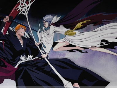 Ichigo and Rukia (Bleach) Natsu and Lucy (Fairy Tail) Edward and Winry (FMA)