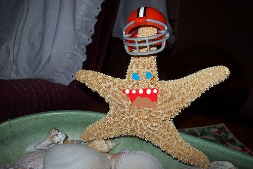 I was A star-fish wearing a football casco eating shawarma. Yes, I detto A star-fish wearing a football casco eating shawarma.