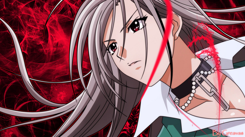 My first was Rosario † Vampire.♥