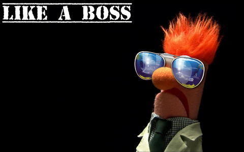 Because I'm a boss.