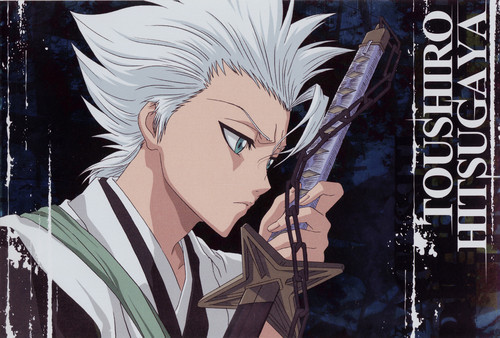 Toshiro Hitsugaya from bleach! We are both serious most of the time. We both have the same zanpakto (mine is a cosplay) We both have the same eye color And I like watermelons and anything else that i am forgetting but me and toshiro are alot alike.
