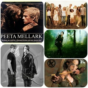 collage I made of THE HUNGER GAMES <3333