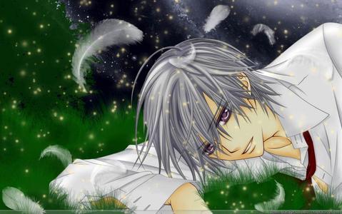 Its not like I have crush, but I like Zero Kiryu from Vampire Knight!