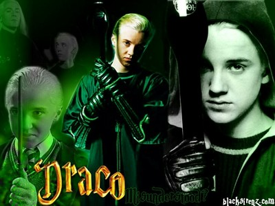 I think Draco is the best cuz after I saw the first film I fell in upendo plus I have another movie of him when he was younger