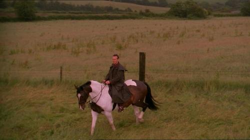 Tony on horse