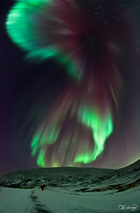 Sure~! I've always wanted to see Aurora.
