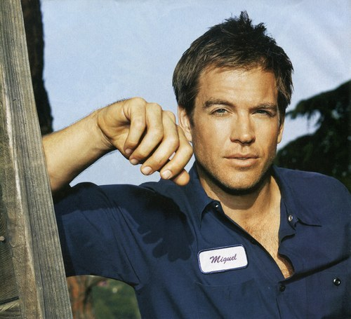 michael weatherly,paully p and jet lee