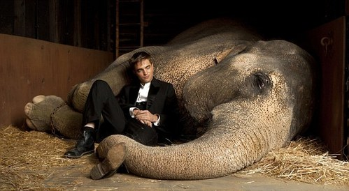my Robert,with Tai his co-star in Water for Elephants<3