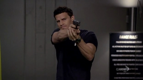 David (as FBI agent Seeley Booth) pointing a gun at a target in a practice range...