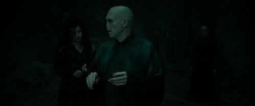sirius black and harry potter relationship to voldemort