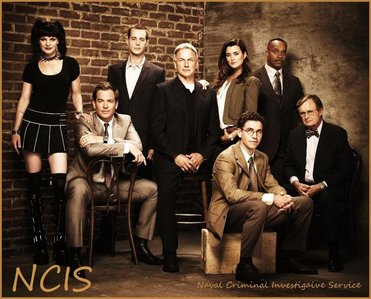 NCIS, it's become my #1 favori tv show.