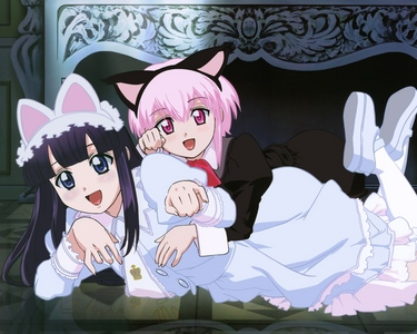 Is this a Zombie? The Melancholy of Haruhi Suzumiya Chobits Moon Phase K-On Heaven's lost Property Spice and lobo Based on the anime tu watched, tu may like these.