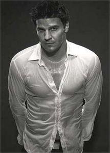 wet hot David! <3