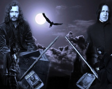 Sirius Black&Severus Snape ! Gary Oldman&Alan Rickman ! Both are beautiful, hot and really special ! Both loved Gary and died for him ... Both were real Heroes :.((((((((......R.I.P.
