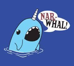 OMG Narwhal!