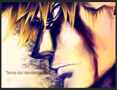 Ichigo from bleach:D