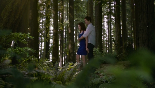 my gorgeous Robert and Kristen as Edward&Bella in a scene from BD 2 with leaves all around them<3