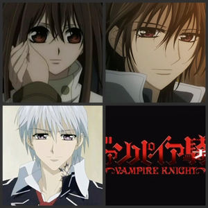 I think nothing anime is the best than vampire knight