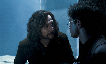 """""""I want آپ to listen to me very carefully, Harry. You're not a bad person. You're a very good person, who bad things have happened to. Besides, the world isn't تقسیم, الگ کریں into good people and Death Eaters. We've all got both light and dark inside us. What matters is the part we choose to act on. That's who we really are. """" Sirius"""