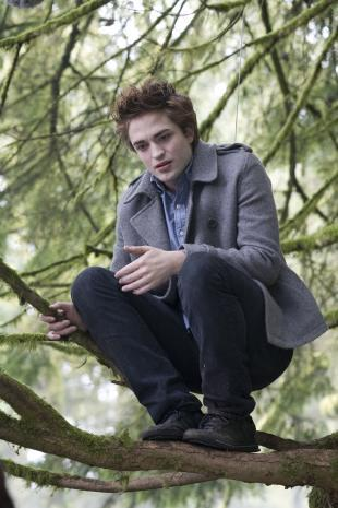 my gorgeous monkey man in a scene from Twilight,with green boom branches behind him<3