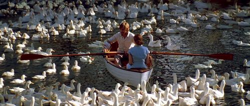 Ryan Gosling&Rachel M3cAdams in a scene from The Notebook surrounded سے طرف کی birds<3